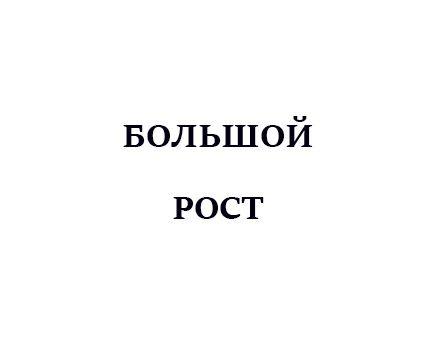 БОЛЬШОЙ РОСТ