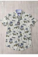 Рубашка мужская Le Marin 805-1
