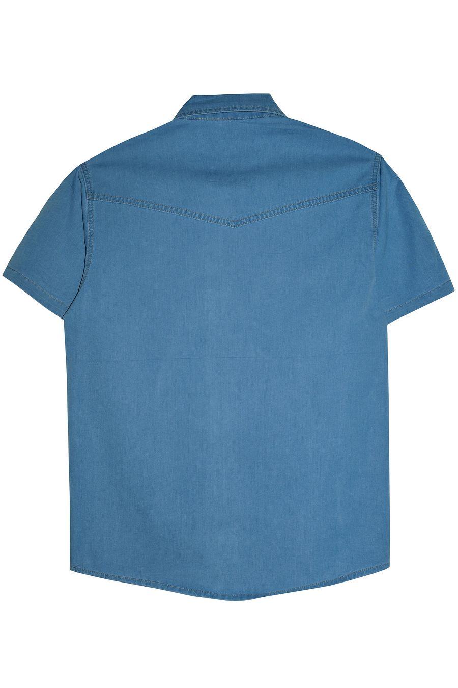Рубашка мужская Vicucs 728E/CT-321-21 (XL-5XL) - фото 2