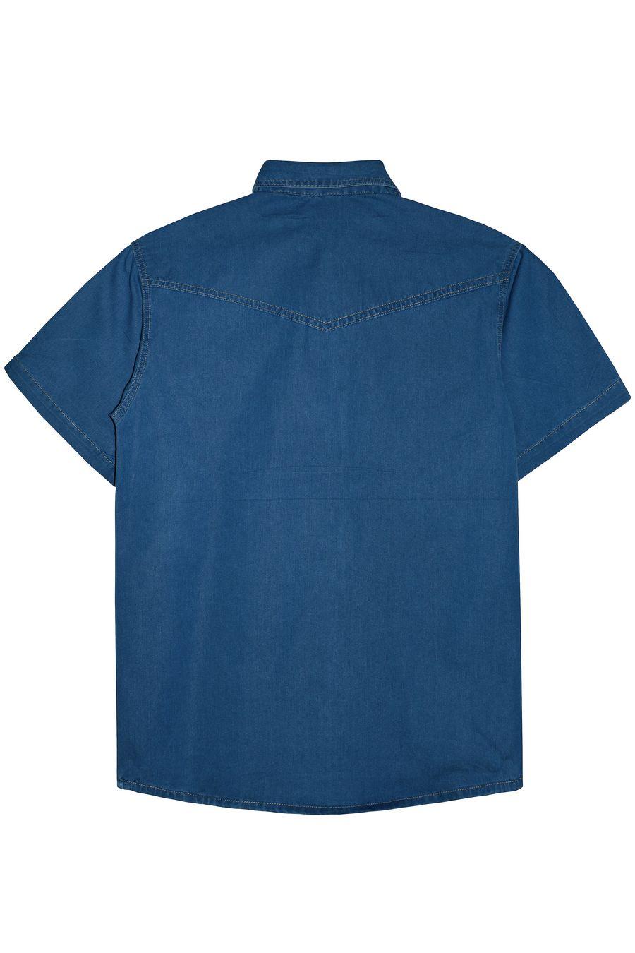 Рубашка мужская Vicucs 728E/CT-321-19 (XL-5XL) - фото 2